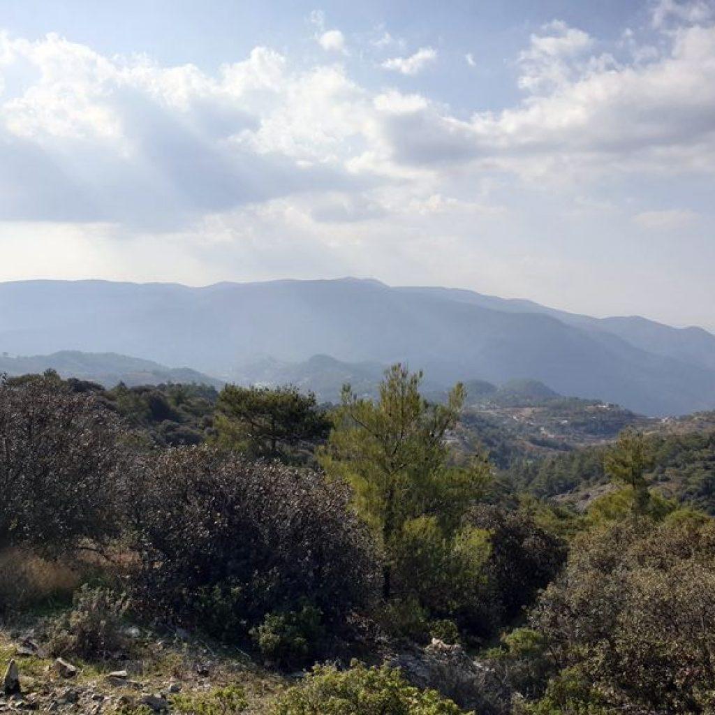 Reisebericht Zypern: Troodos Gebirge