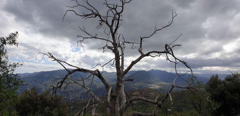 Reisebericht aus Andalusien:  Gespenstisch schön
