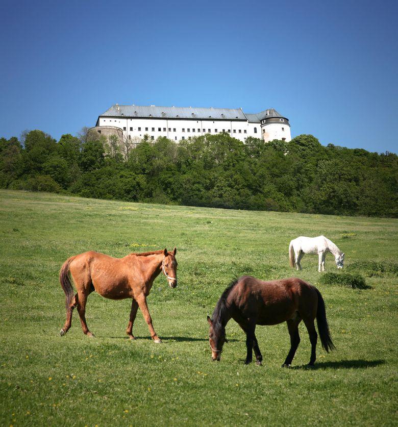 Burg in den Karpaten