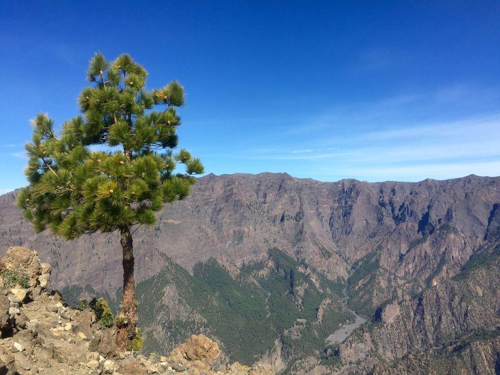 Kraterlandschaft auf La Palma