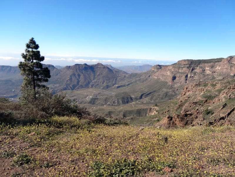 Wanderwoche Gran Canaria