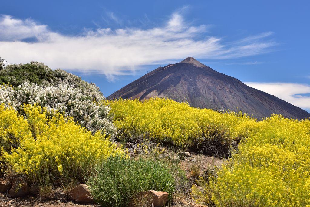 Teneriffa: Gipfel des Teide