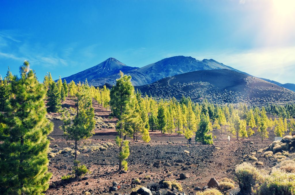 Teneriffa Nationalpark