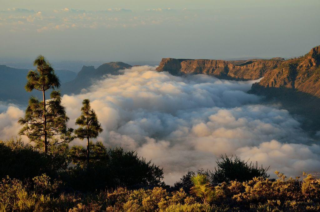 Gran Canaria: Tirajana Tal