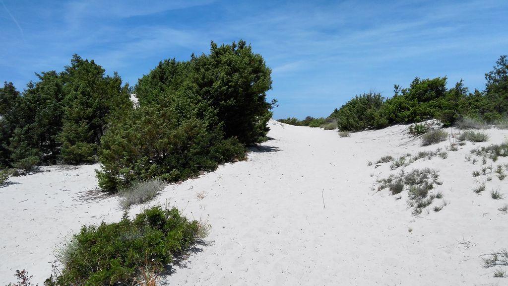 Korsika: Wandern auf einem Sandwanderweg