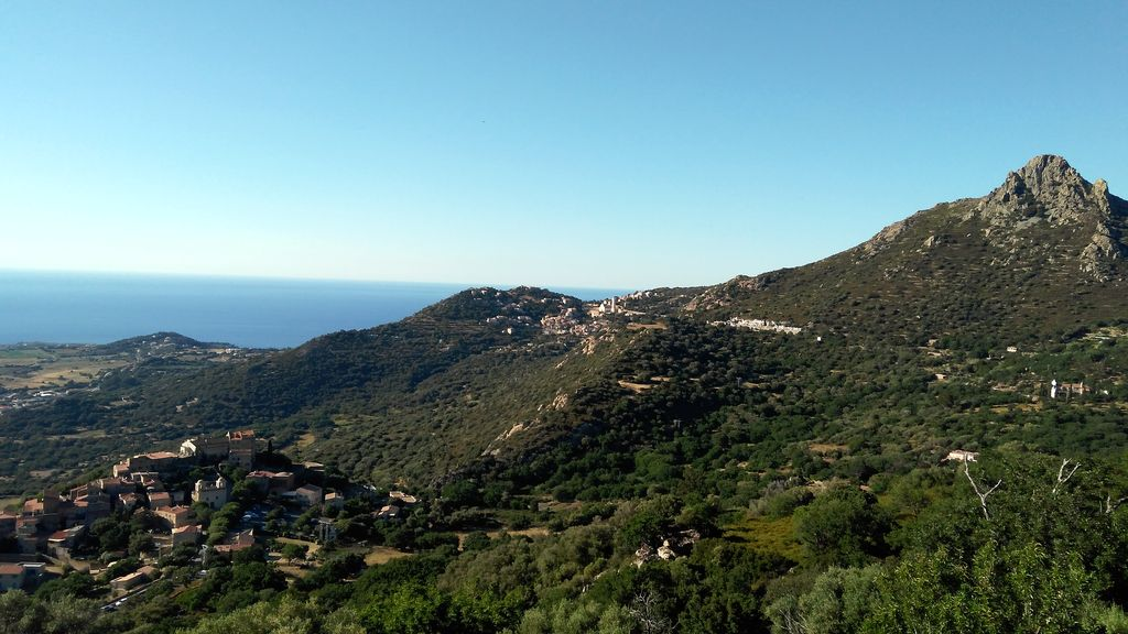 Korsika: Wald